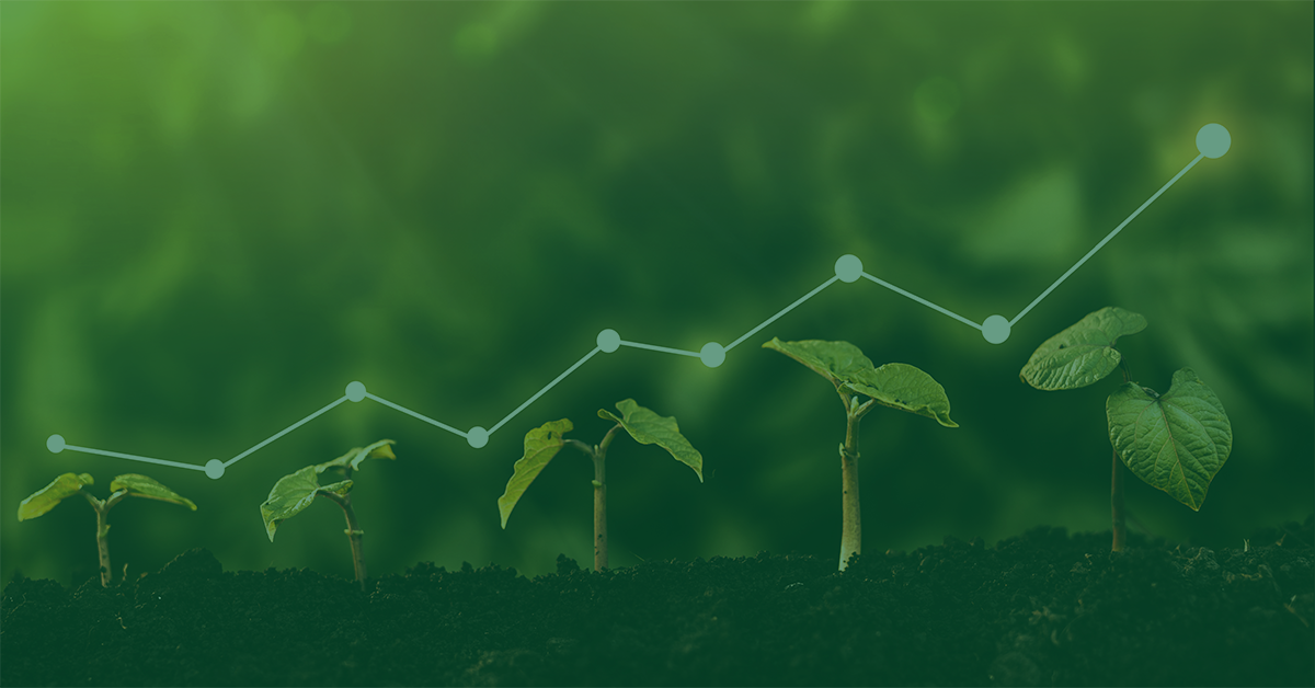 ESG in High Yield: Shortcuts Versus Thoughtful Integration